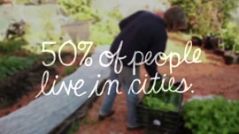 """50 percent of people live in cities"""