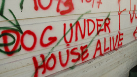 Spray painted markings indicating homes where pets were found