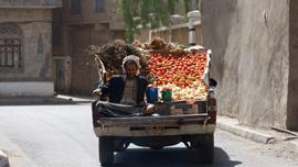 Sana'a fruit vendor.