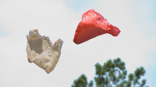 Plastic Bags meet