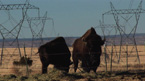 Energy production on native lands is polluting the reservation and leaving poverty in its dirty shadow.