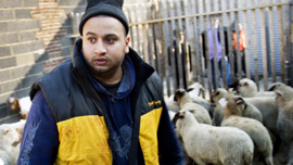 Imran Uddin tries to organize hundreds of goats and lamb during the holiday of Qurbani in Queens, New York.