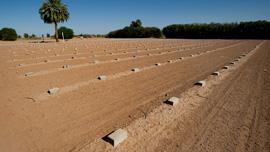 John Doe Cemetery in Holtsville, CA
