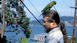 Mark Bittner with the wild parrots of telegraph hill